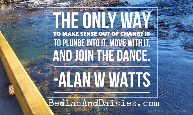Alan Watts Quote - The only way to make sense out of change is to plunge into it, move with it, and join the dance. Roanoke River in the background