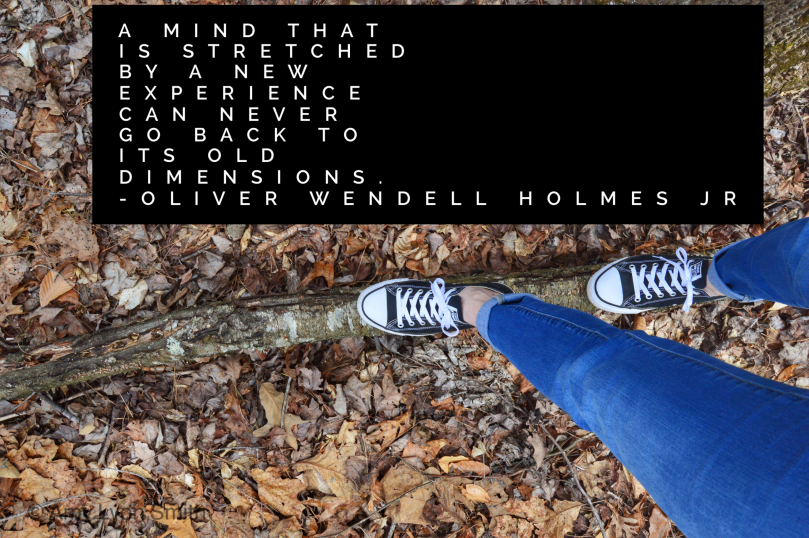 "Oliver Wendell Holmes Jr ""A mind that is stretched by a new experience can never go back to its old dimensions"""
