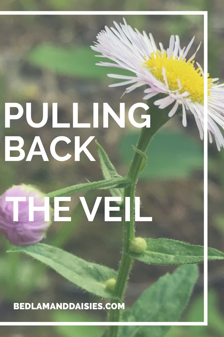 Pulling Back the Veil